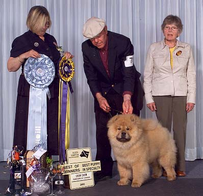 2008-winners-bitch