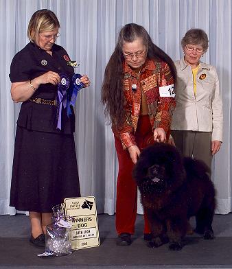 2008-winners-dog